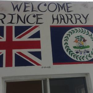 Welcome Prince Harry